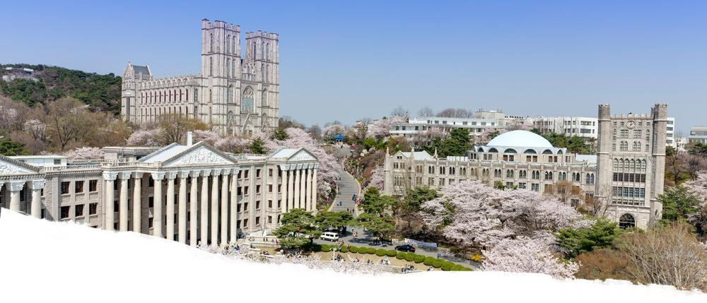 View of Korea University with cherry blossoms in bloom