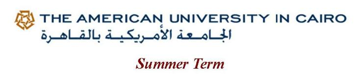 AUC_Summer_Program_banner